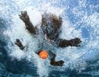 underwater-dogs-2013-calendar (2)