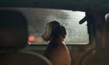 dogsincars_interna